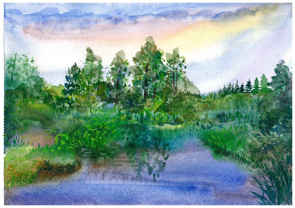 «Сестрорецкое болото», Михеева Серафима, 11 класс, ГБОУ СОШ №531