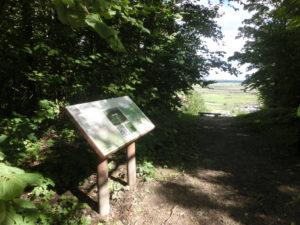 Информационный стенд экомарштута (фото автора)