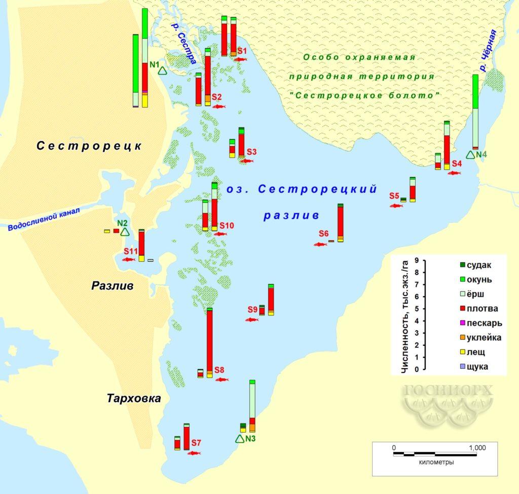 Рисунок 6. Распределение численности рыбы на акватории Сестрорецкого Разлива по данным контрольных съемок (левый столбик – осень 2015-го, правый – весна 2016 года; для станции №4 – только весна 2016-го).