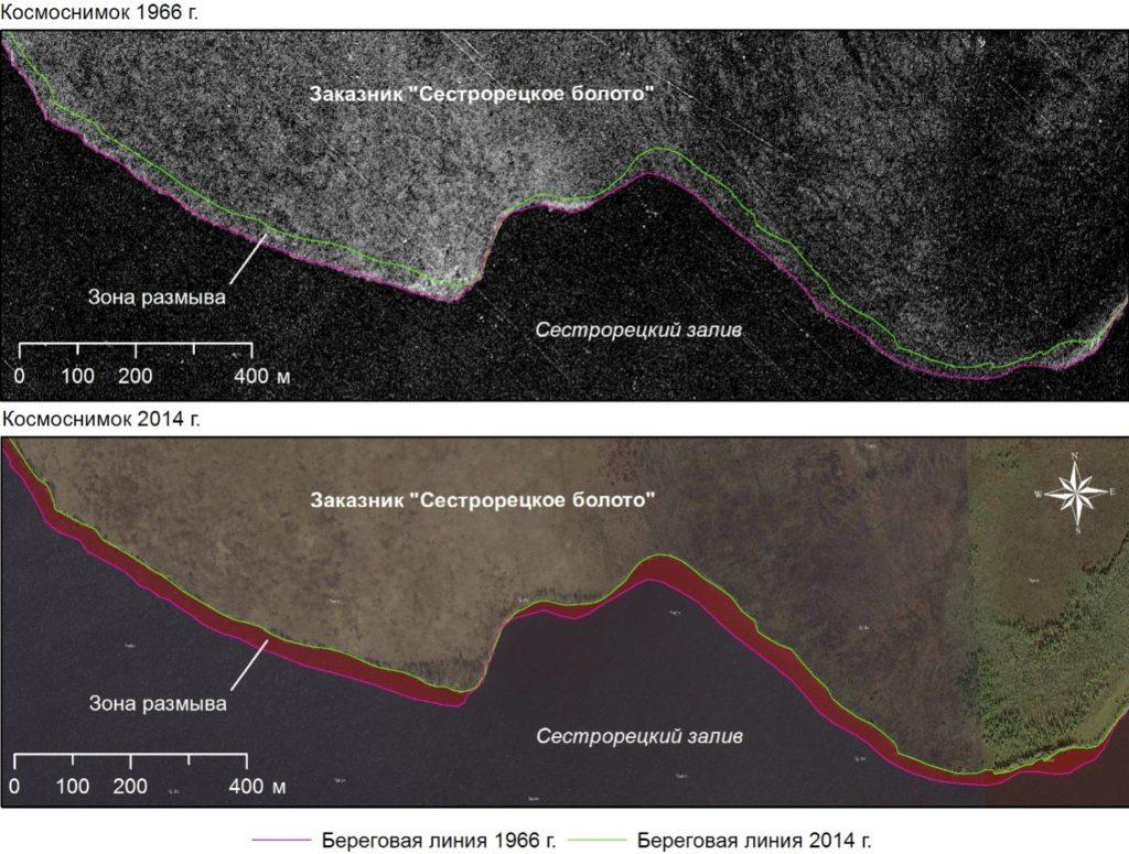 Рисунок 3. Трансформация северо-восточного берега Сестрорецкого Разлива по данным анализа космоснимков 1966-го и 2014 года