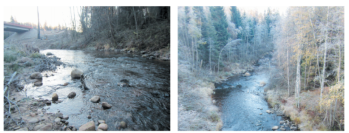 Рисунок 4. Река Сестра на участках облова №1 и 2