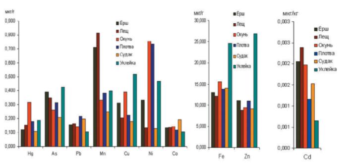 Рисунок 16. Средние концентрации тяжелых металлов в мышечной ткани разных видов рыб Сестрорецкого Разлива
