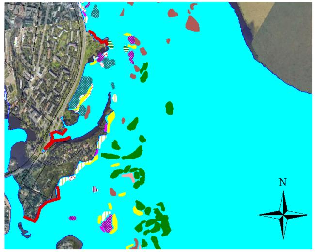 Рисунок 1. Участки берега в Сестрорецком Разливе под посадку тростника