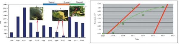 Рисунок 2. Межгодовая изменчивость количественных показателей (биомассы) массовых видов вселенцев А – биомасса D. polymorpha на станциях сезонных и ежегодных наблюдений разреза 7, расположенного в зоне воздействия гидротехнических работ и апвеллингов в период с 1998-го по 2013 год по [6] с перерывами в наблюдениях в 1999 году и с 2009-го по 2011 год. Вверху над областью диаграммы – периоды, выделенные на основании периодичности проведения гидротехнических работ в Невской губе. В области диаграммы – фрагменты КС: 1 – 31 июля 2003 года; 2 – фрагмент КС, визуализирующий типичную ситуацию 2006–2007 гг. (второй период); 3 – фрагмент КС, типичный для 2008 года; Б – средняя биомасса (г/м2) малощетинковых червей Marenzelleria arctia на станциях зоны бассейновой аккумуляции Курортного района (станции 19, 20 и 21) в июле–августе 2008–2014 гг. [11], после прекращения намывных работ.