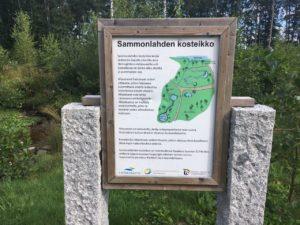 Искусственные водно-болотные угодья, созданные с целью очистки ливневых стоков