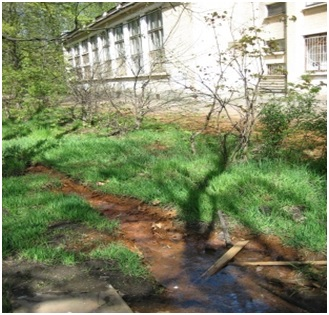 Рисунок 4. Участок подтопления подземными водами ВМВГ во дворе дома на пр. Металлистов в Калининском районе