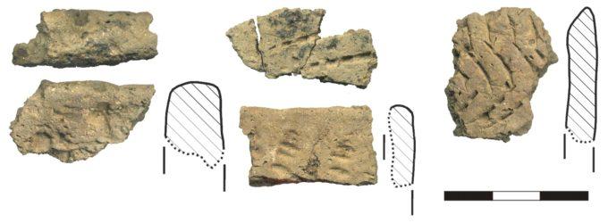 Рисунок 4. Нарвская керамика раннего неолита