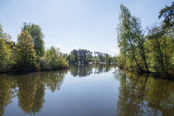 Природно-исторический парк. © ГПБУ Мосприрода. Фото Михаила Подобеда