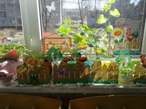 Мини-огород на подоконнике (дети наблюдают этапы развития растений)