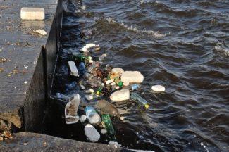 мусор в пруду