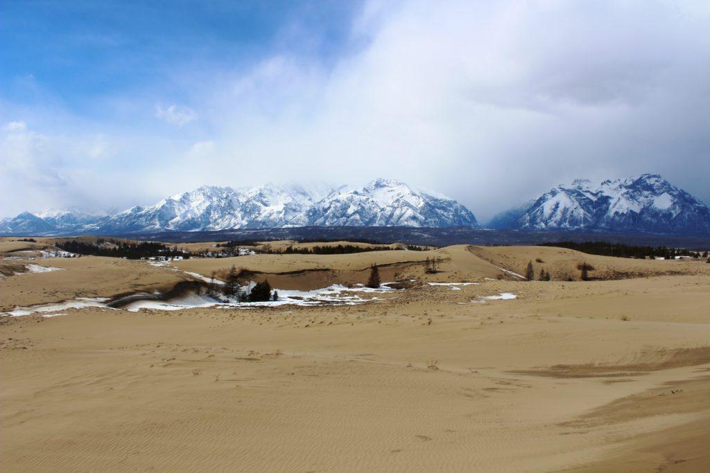 Чарские пески, памятник природы регионального значения. Фото Е.В. Бутько