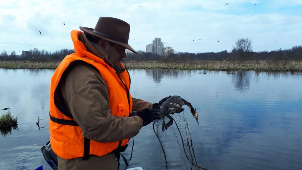 В браконьерские сети могут попасть и птицы. Фото Д.Д. Мухаметшина