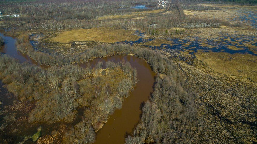 Река Сестра весной. Фото А.В. Ладыгина