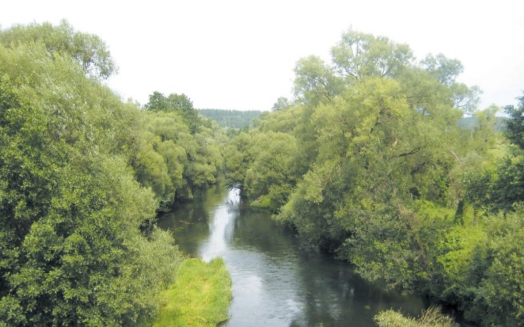 Предполагаемая ООПТ – пойма реки Серена в Мещовском районе