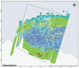 Карта водной растительности участка Южного побережья Финского залива