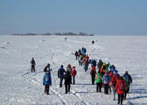 Зимний поход на форт Тотлебен. Фото Ольги Гармашовой (клуб «Пойдем ходить!»)